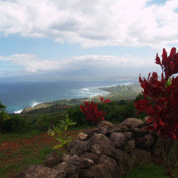 Maui Sacred Sites Tour