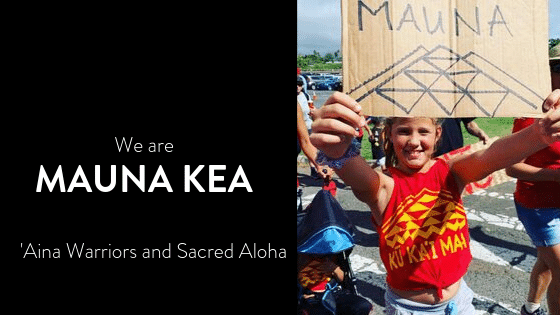Photo of Mauna Kea protector